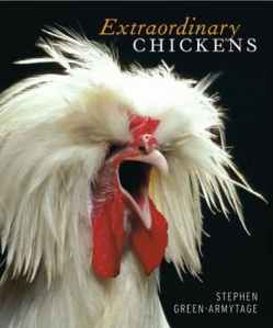 chickenbook